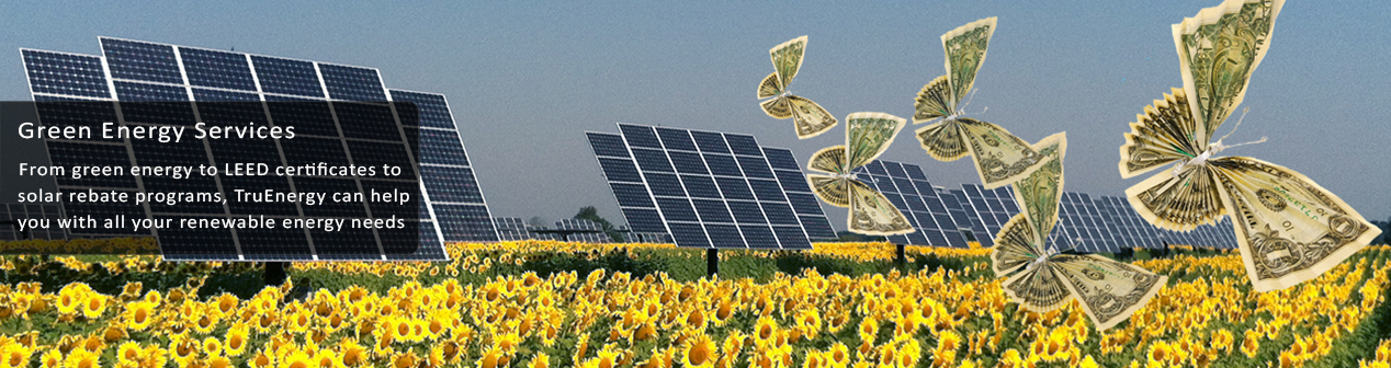 Solar rebate programs available